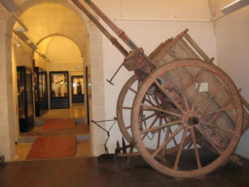 Lizzano, Museo civico della paleontologia e dell'uomo
