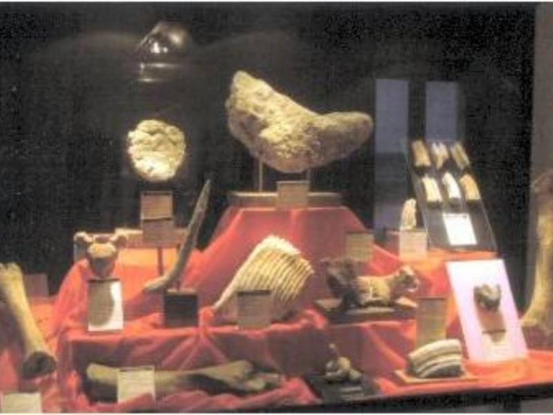 Latiano, Museo del Sottosuolo di Latiano