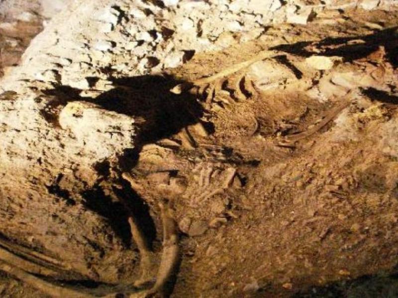 Ostuni, Museo di Civiltà Preclassiche della Murgia Meridionale e Parco Archeologico e Naturale di Santa Maria di Agnano di Ostuni