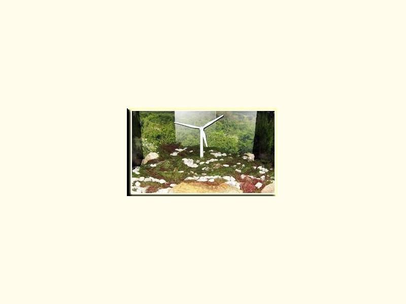 Specchia, Museo di Specchia - Dalla civiltà contadina al museo del bosco e delle fonti rinnovabili