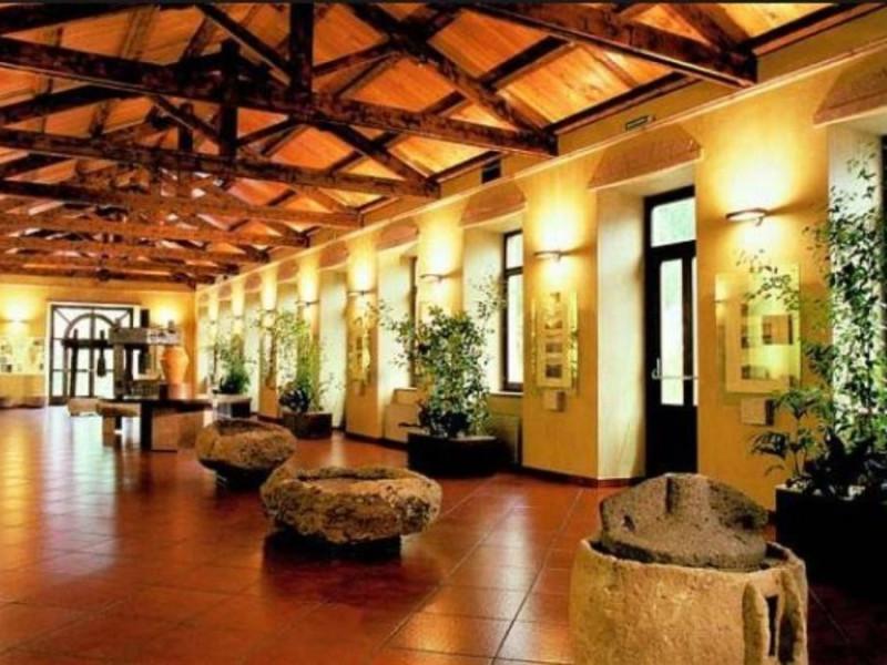 Museo Sella Miosca