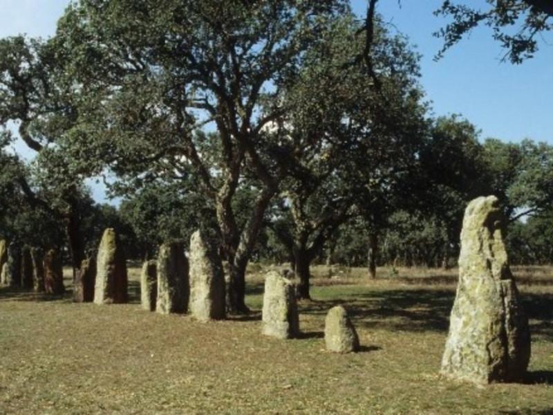 Goni, Area archeologica di Pranu Muttedu