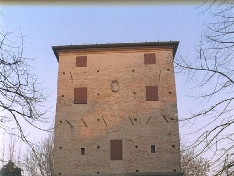 Bellaria Igea Marina, Museo delle Conchiglie