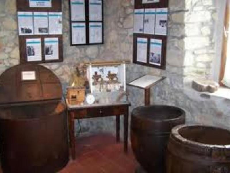Museo_della_castagna