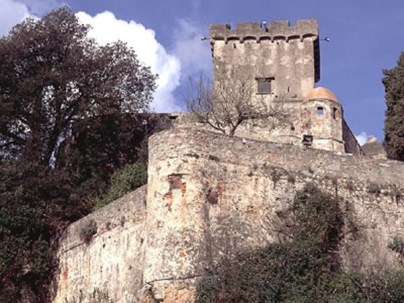 Particolare del Castello - San Terenzo
