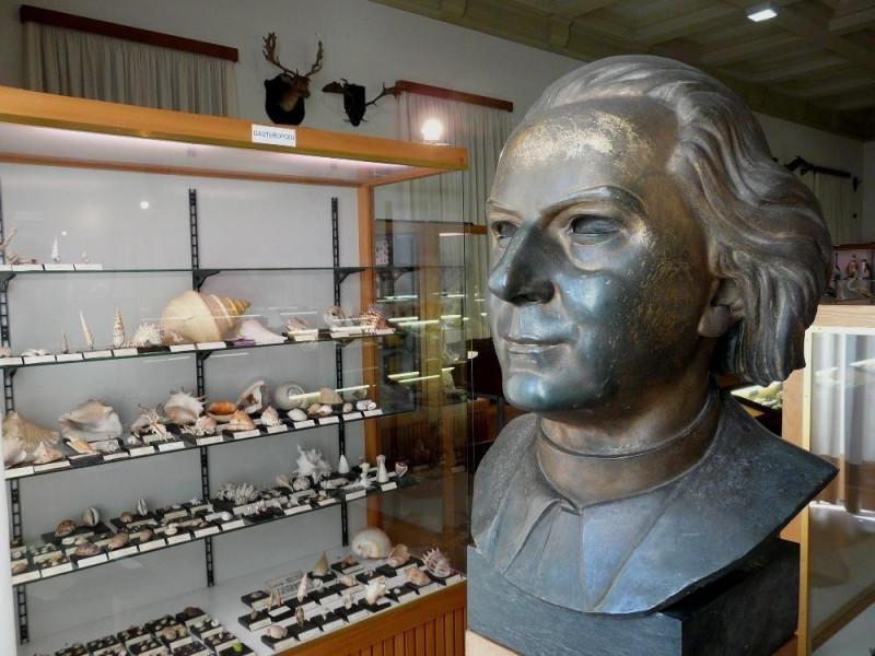 Venegono Inferiore, Museo di Storia Naturale A. Stoppani