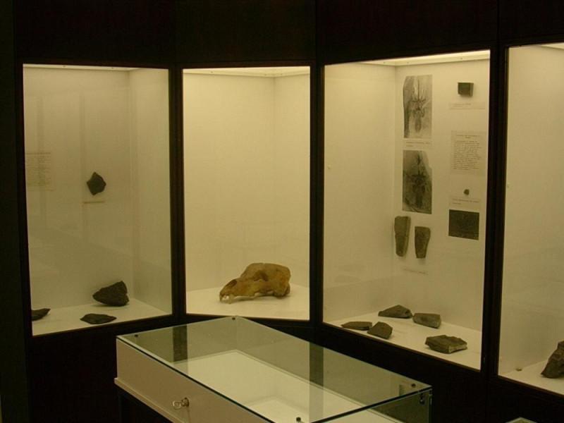 Lanzo d'Intelvi, Museo dei Fossili dei Monti Intelvesi